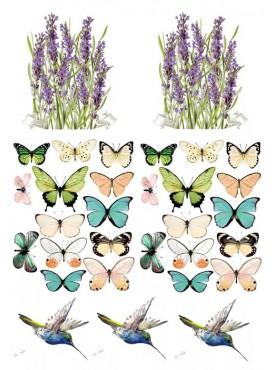"Съедобные картинки на сахарной бумаге ""Бабочки"" №004"