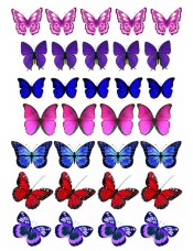 """Съедобные картинки на торты """"Бабочки"""" №011"""